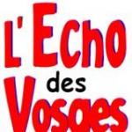 Article de l'Écho des Vosges sur le travail des élus FN à l'occasion de la venue de Marie-Christine Arnautu à Épinal